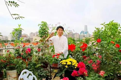 Độc đáo với khu vườn xanh ngát trên mái chung cư