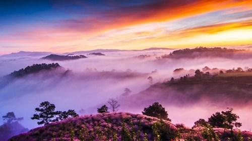 Những bức ảnh sương sớm làm say lòng người ở việt nam