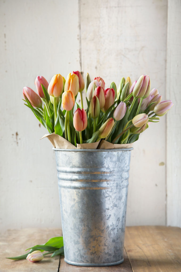 Những mẹo làm sống lại hoa héo không phải ai cũng biết