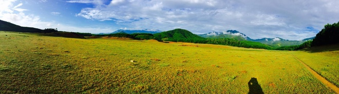 Cùng ngắm thảo nguyên cỏ vàng của hồ hòa trung ở đà nẵng
