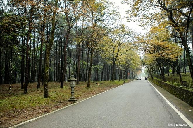 Ngắm cảnh vườn quốc gia ba vì vào mùa thay lá