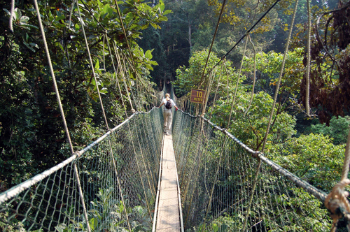 Thót tim với những cây cầu có kết cấu đẹp trên thế giới