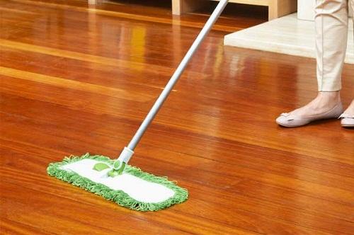 10 cách diệt đường xâm nhập của côn trùng vào nhà