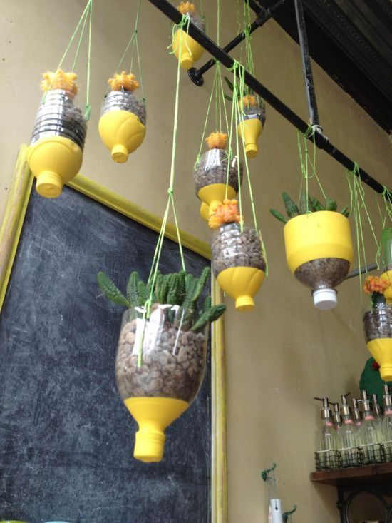 Vườn treo từ trăm chai nước suối cho nhà chật