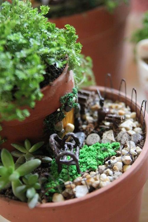 Mẹ bỉm sữa trồng vườn mini mang lại không gian thiên nhiên tuyệt đẹp