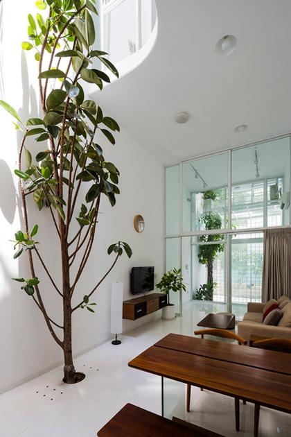 Ngắm nhà ống 42 m2 với cây xanh khắp nhà