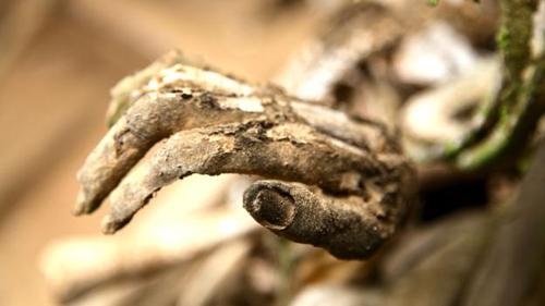 Rùng rợn tục hun khói xác chết ở nơi từng ăn thịt người