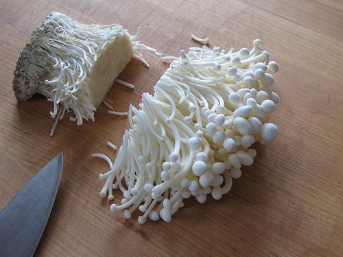 Tự trồng nấm kim châm sạch tại nhà ăn giải ngán ngày tết
