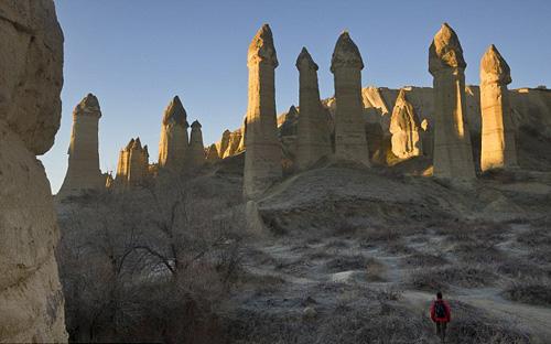 rừng dương vật ở cappadocia