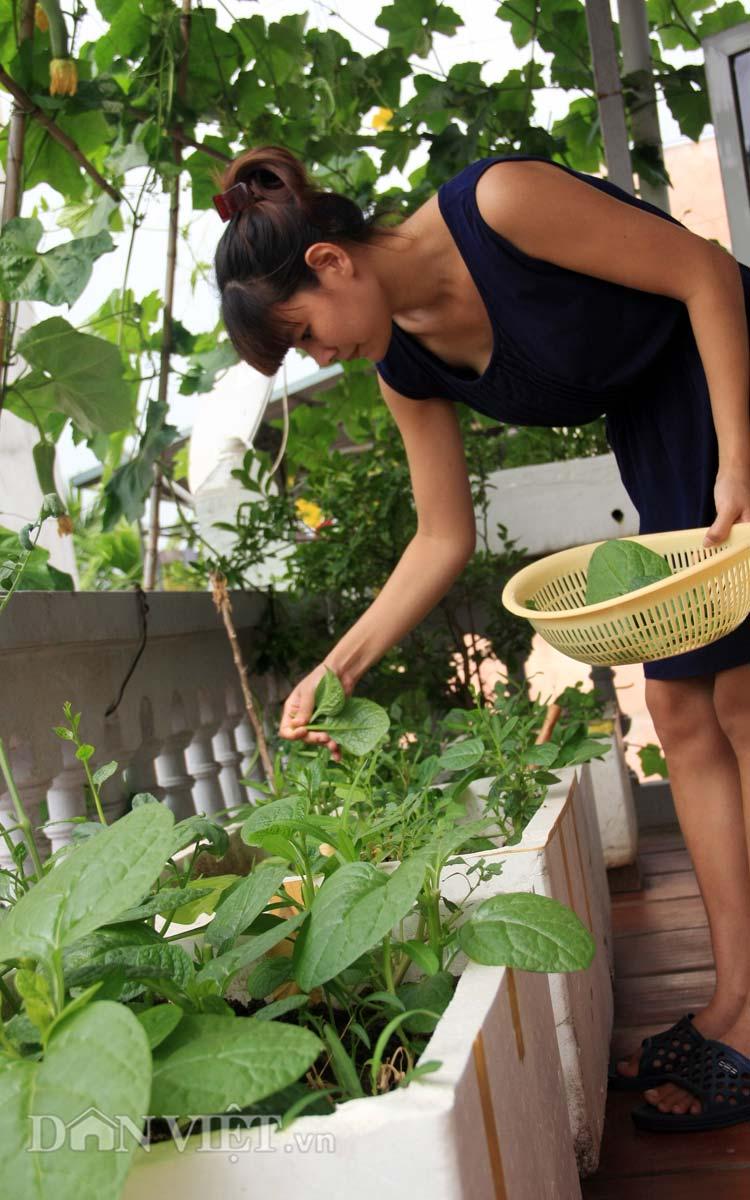 Chăm vườn rau sân thượng - tuyệt chiêu cơm lành canh ngọt của vợ chồng trẻ