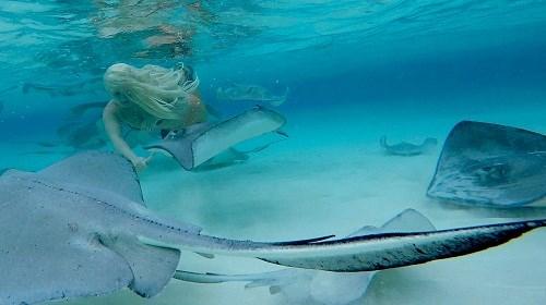 Choáng ngợp trước nhan sắc của nàng tiên cá ngoài đời thật