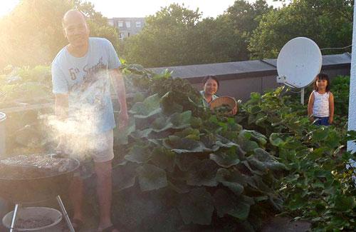 anh đầu bếp mát tay với khu vườn lúc lỉu đầy hoa quả